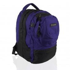 Рюкзак с отделением для ноутбука Onepolar W1331-blue