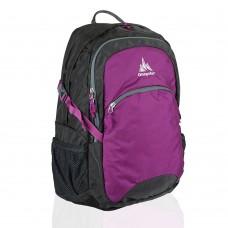 Рюкзак с отделением для ноутбука Onepolar W1990-purple